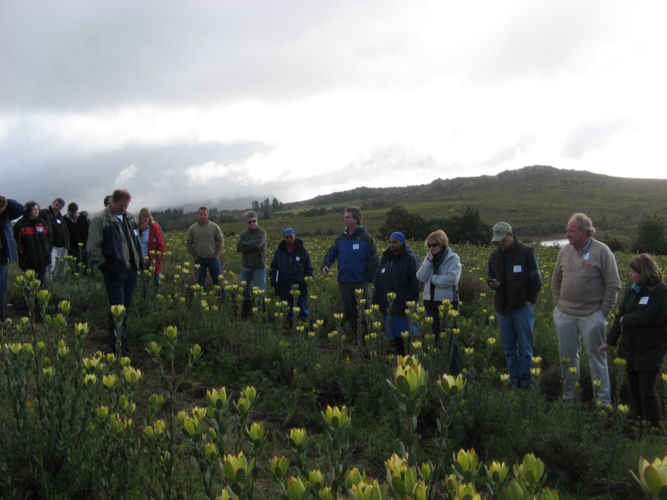 PPSA Field Day Piketberg 2010 01