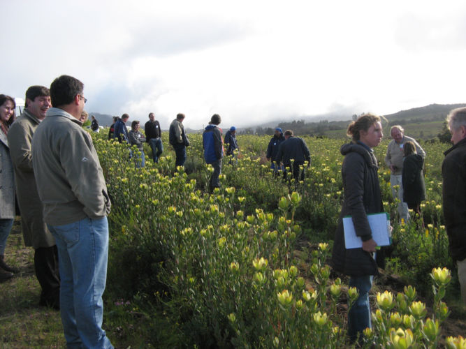 PPSA Field Day Piketberg 2010 02