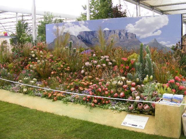 Chelsea Flower Show 02