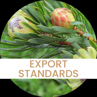 Exporters Standards
